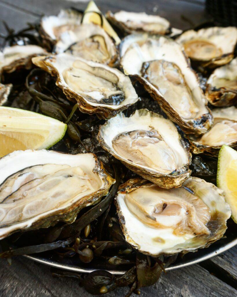 Culinair Zeeland - Genieten van de Zeeuwse schatten,