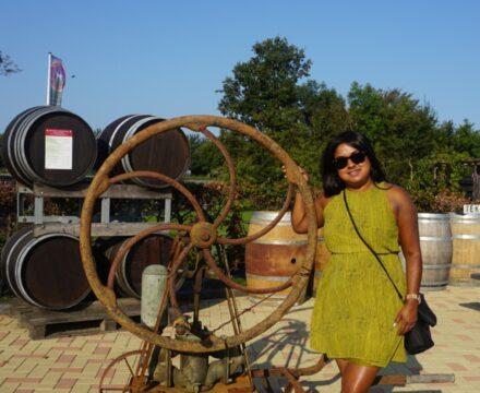 De Zeeuwse wijngaard – Wijnhoeve De Kleine Schorre